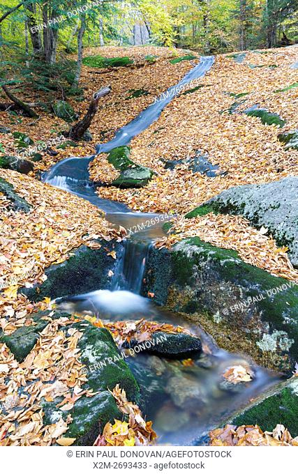Clough Mine Brook, a tributary of Lost River, in Kinsman Notch of Woodstock, New Hampshire USA during the autumn months