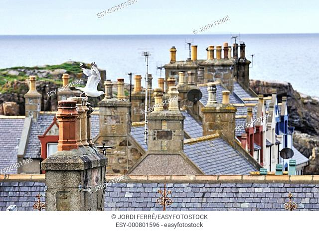 Findochty, Aberdeen region, Scotland, United Kingdom, Europe