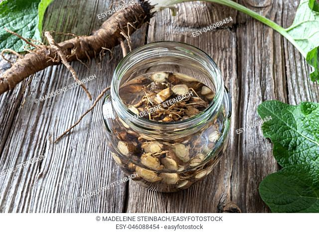 Preparation of burdock tincture from fresh roots and alcohol