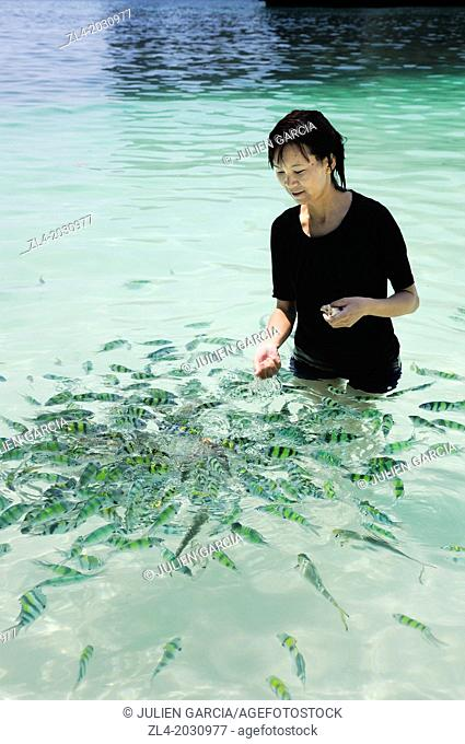 Young Thai woman feeding the fishes in the sea. Thailand, Krabi, Hong island. Model Released