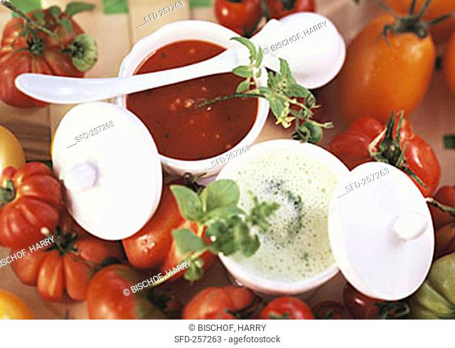 Tomato soup and creamed herb soup in soup bowls