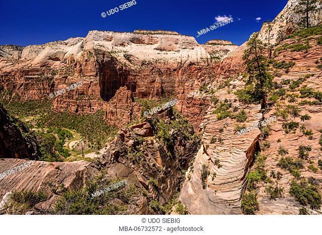 The USA, Utah, Washington county, Springdale, Zion National Park, Zion canyon close Virgin River and Angels Landing at Big Bend