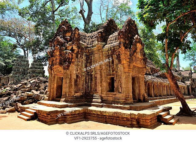 Cambodia, Siem Reap, Ta Prohm temple ruins
