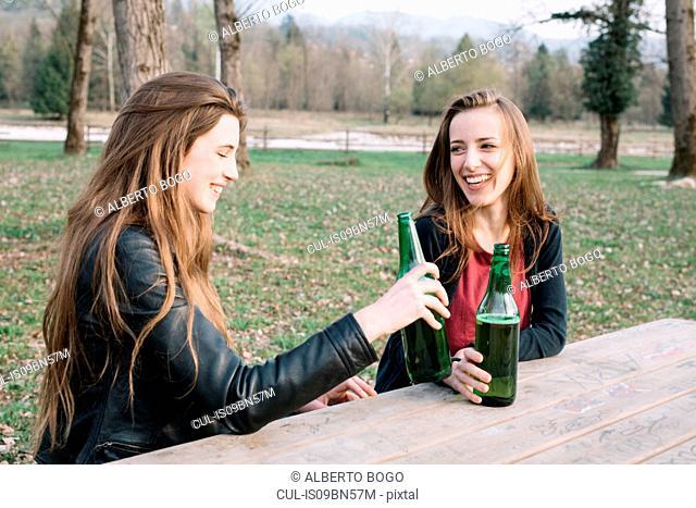 Girlfriends drinking beer in park