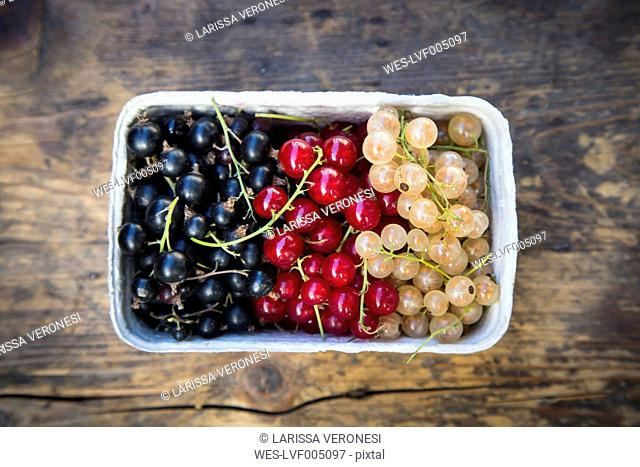 Cardboard box of black, red and white currants