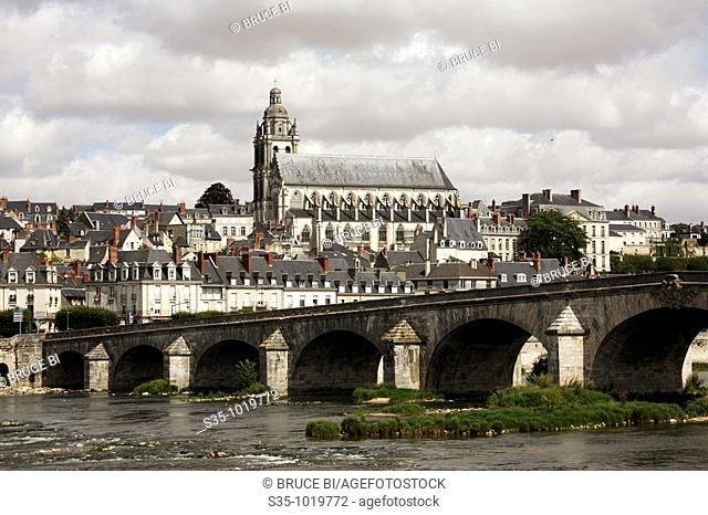 Town of Blois with River Loire in foreground, Loir-et-Cher, France