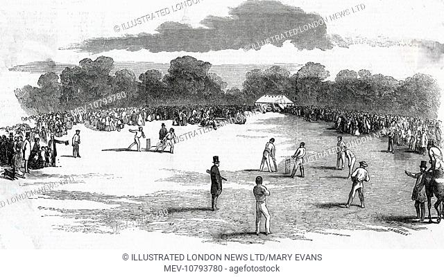 The royal party visits a cricket match which was being held at Castle Howard, also lots of spectators gather round to watch the match