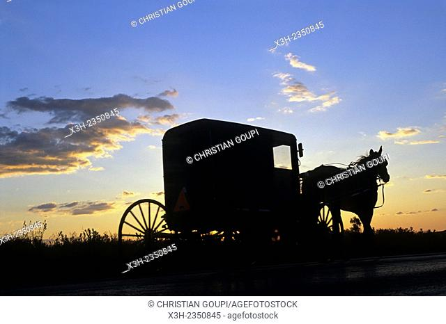 Horse-drawn buggy on the road at sunset, Lancaster County, Pennsylvania, United States, North America