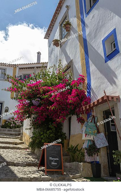 Flowers and colors in the typical alleys of the ancient fortified village of Obidos Oeste Leiria District Portugal Europe