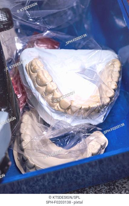 Dental prosthesis in plastic bag