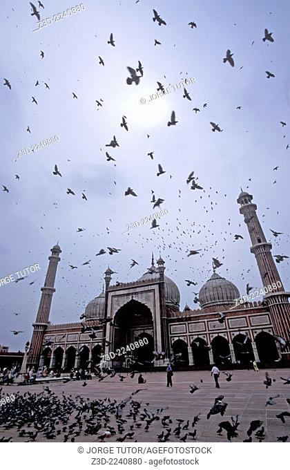 Main Facade Masjid-i Jahan-Numa, Jama Masjid Old Delhi India mosque with doves pigeon