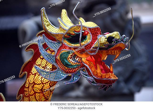Chinese dragon, chinese New Year, Yokohama Chinatown district, Kanagawa Prefecture, Honshu island, Japan, Asia