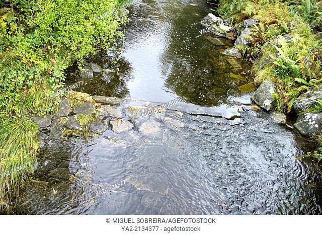 River Through Scottish landscape - Galloway Hills - Scotland