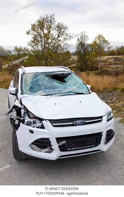 Wrecked car after collision with moose (Alces alces) on road in Scandinavia