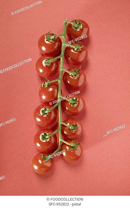 Cherry tomatoes on red background
