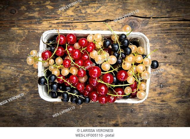 Cardboard box with mix of black, red and white currants