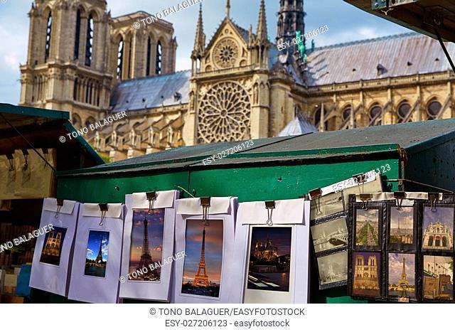 Saint Michel postcards in Notre Dame Paris photomount card images of my own copyright