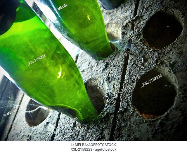 Champagne bottles in pupitres. San Sadurni, Barcelona. Catalonia. Spain