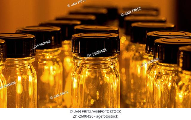 Row of small and empty glas bottles with black caps