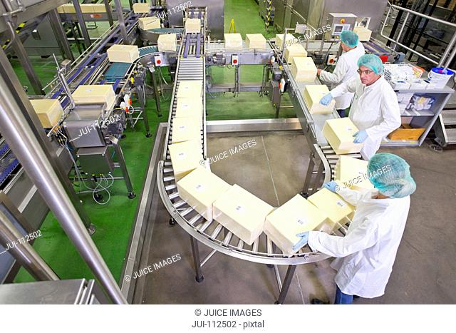 High angle view quality control workers checking large cheese blocks on production line in processing plant
