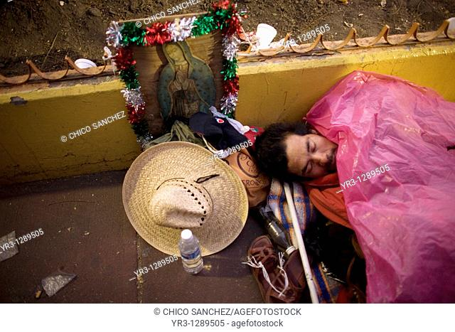 A pilgrim sleeps in the street by an image of the Our Lady of Guadalupe virgin in Mexico City, December 11, 2010  Hundreds of thousands of Mexican pilgrims...