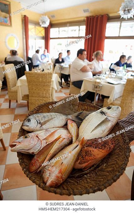 France, Bouches du Rhone, Marseille, Chez Fonfon restaurant at the Vallon des Auffes harbour, presentation of the fish for the bouillabaisse typical fish soup...