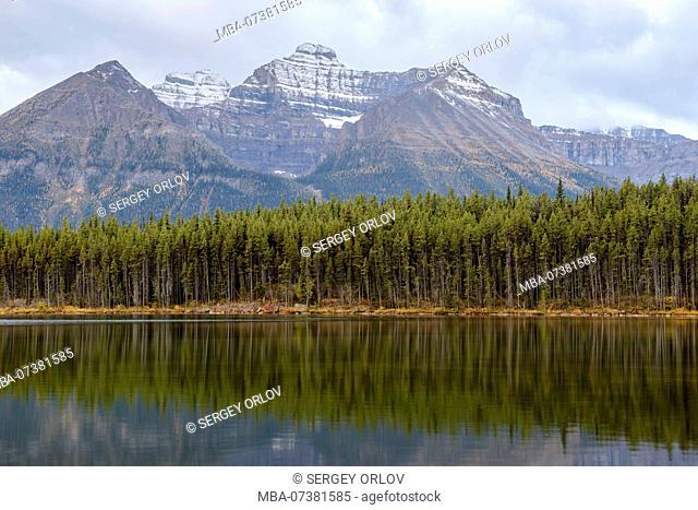 Banff National Park, Herbert Lake, Rocky Mountains, forest, reflection, steady, canadian rockies, ideal