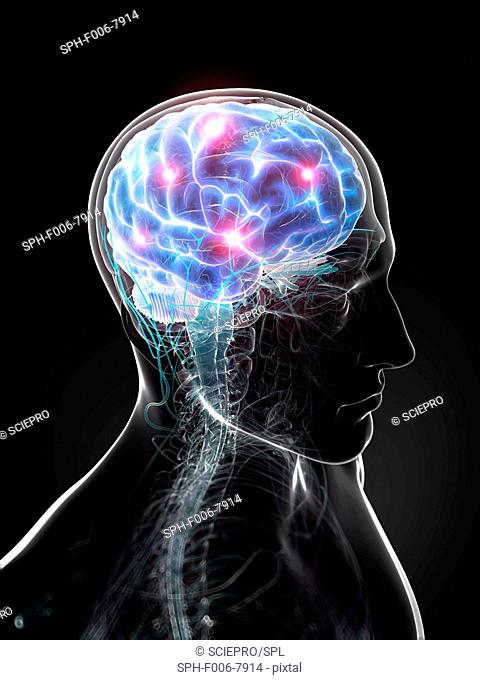 Brain activity, computer artwork