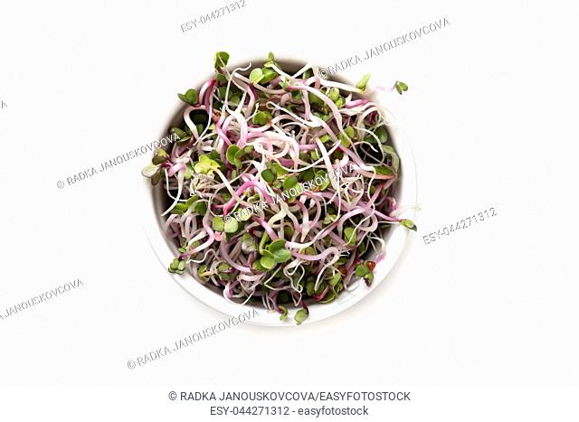 Fresh pink radish sprouts in a bowl on a white background, top view