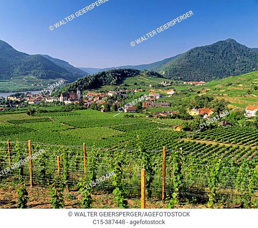Village Spitz. Donau river, wine growing. Region Wachau, Lower Austria