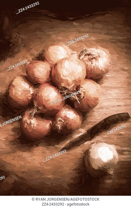Rustic cooking still life digital painting of brown onions on a wooden kitchen table with knife. Dining home decor