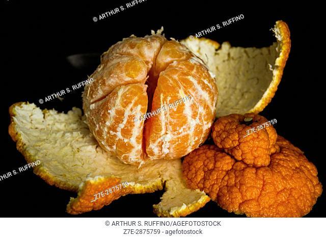 A peeled sumo orange (macro view against black background)
