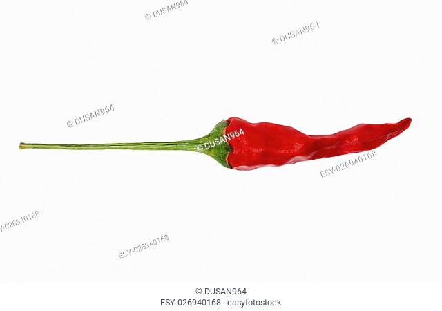 Dried red hot chili pepper isolated on white, close up
