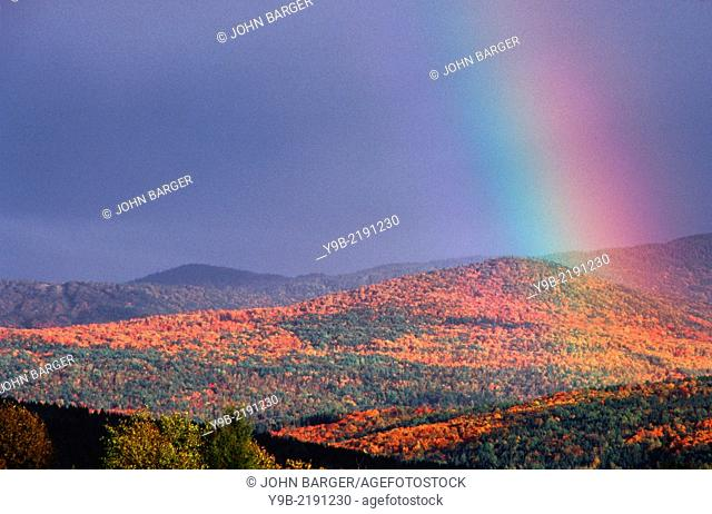 Rainbow and fall-colored hardwoods on hillside, near Colebrook, northern New Hampshire, USA