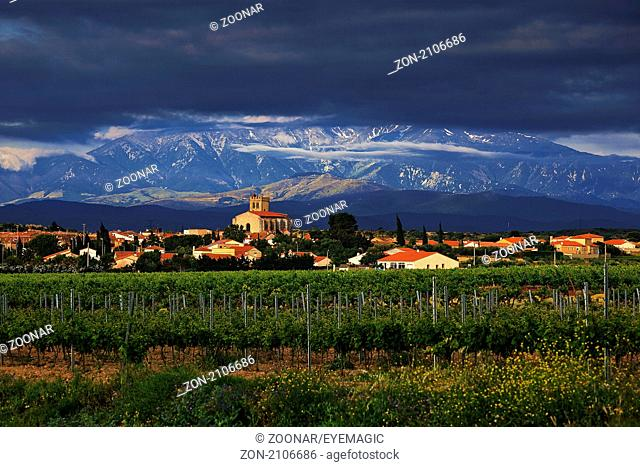 wine village of Baixas in front of the Canigou massive, Languedoc-Roussillon, France