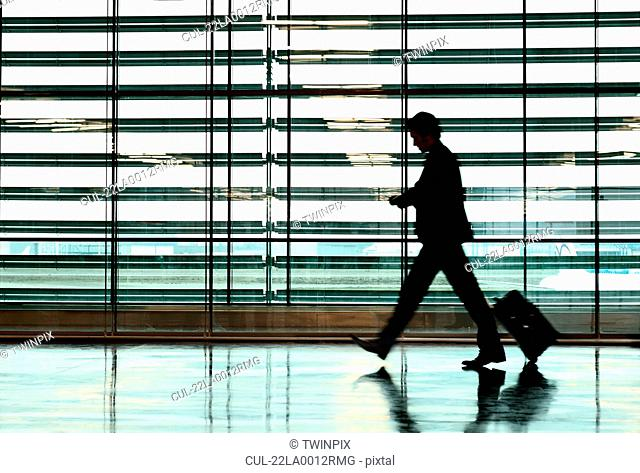 Business Man in airport