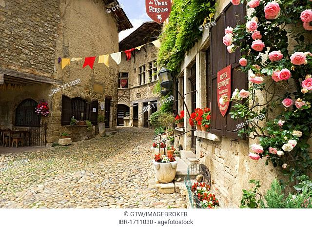 Cobblestone street, medieval walled town of Perouges, France, Europe