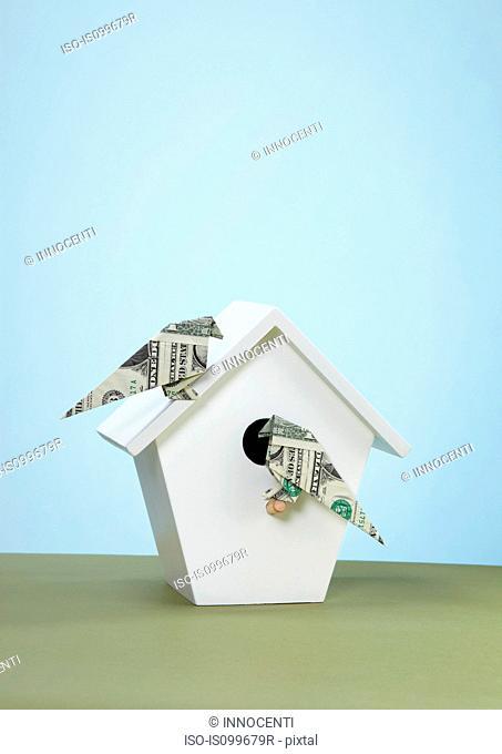 Origami us banknotes imitating birds on bird box