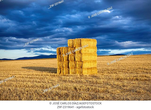 Straw bales, Duratón, Sepulveda, Segovia province, Castilla-Leon, Spain