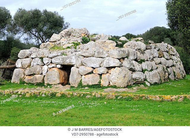 Naveta de Rafal Rubi, megalithic chamber tomb (Pre-talaiotic age). Minorca Biosphere Reserve, Balearic Islands, Spain