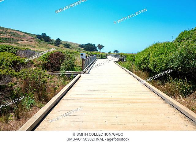 Boardwalk through wetlands on Old Mori Trail at Mori Point, part of the Golden Gate National Recreation area, in Pacifica, California, June 20, 2017