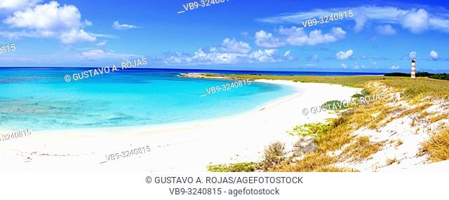 Tropical beach of island francisqui , Los Roques, Venezuela