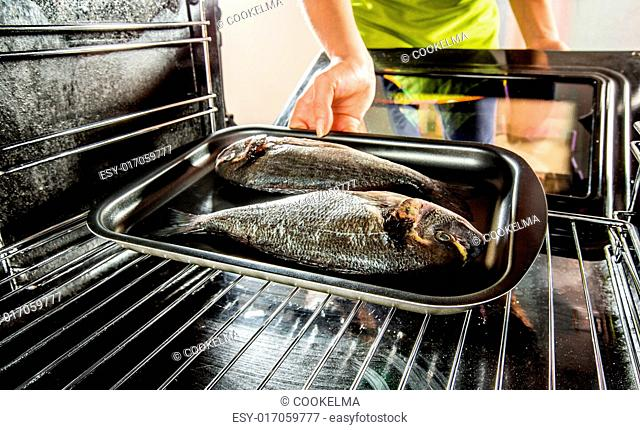 Housewife prepares dorado fish in the oven, view from the inside of the oven. Cooking in the oven