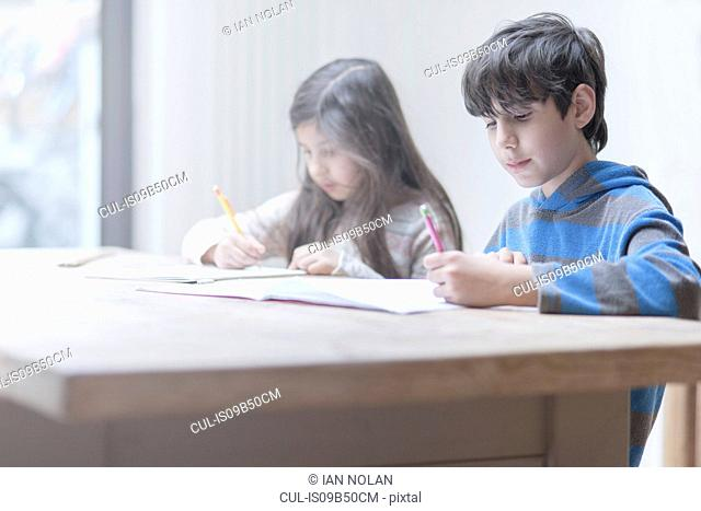Boy and sister doing homework at kitchen table