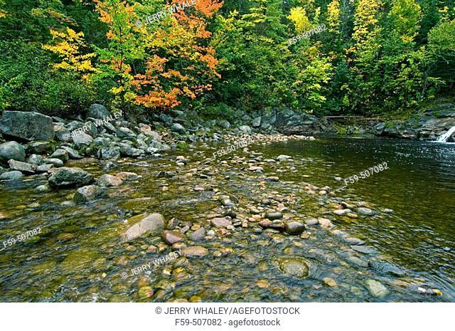 Mary Ann Brook, Cape Breton Highlands National Park, Cape Breton Island, Nova Scotia, Canada