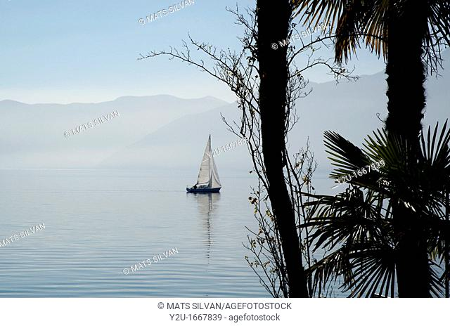 Sailing boat on an alpine lake with palms and mountains