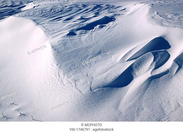 shapes and texture of snow drift dunes - 23/01/2005