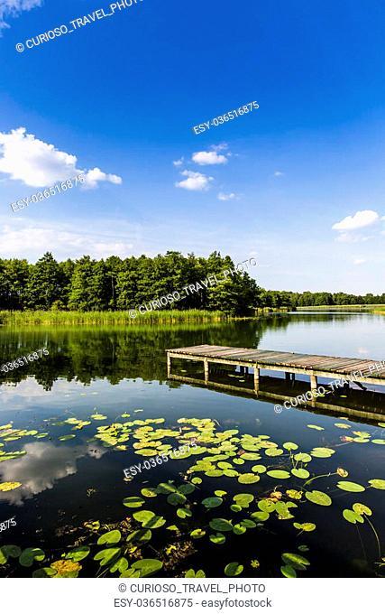 Lake Wigry National Park. Poland