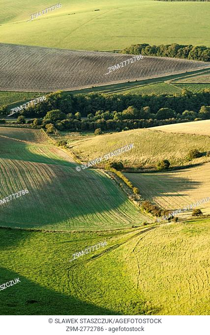 Summer afternoon in South Downs National Park, East Sussex, England