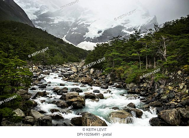 French Valley, Torres del Paine National Park; Torres del Paine, Magallanes and Antartica Chilena Region, Chile